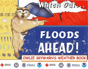 owlie floods